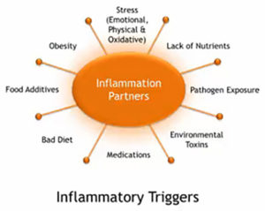 inflammation-triggers
